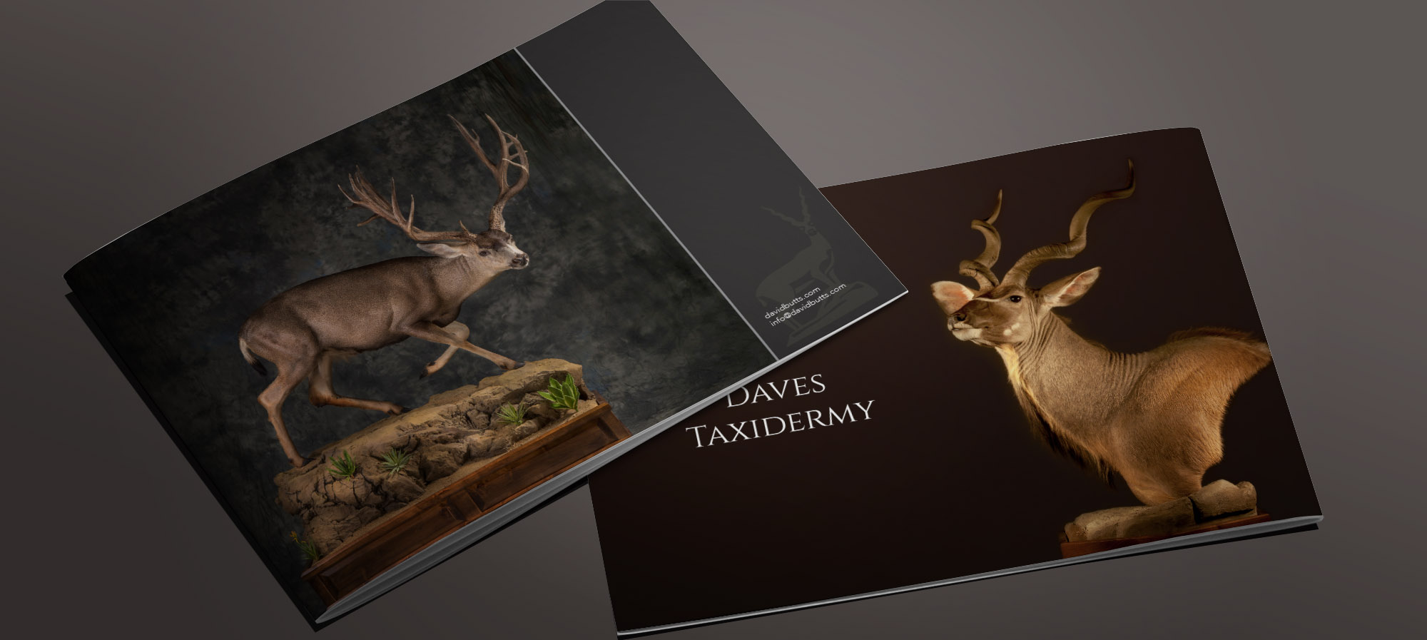 Daves Taxidermy – Joshua Butts Design